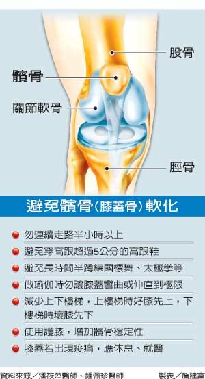 左膝关节的结构图